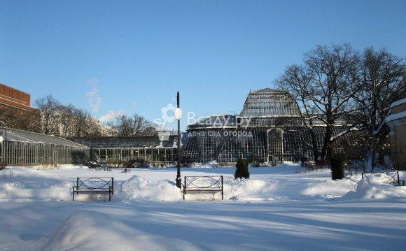Ботанический сад Петра